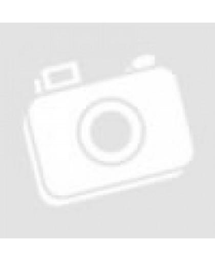 Чехол-рубашка на переднее сиденье с подголовником черный с красным 4пр ARNEZI A0508001